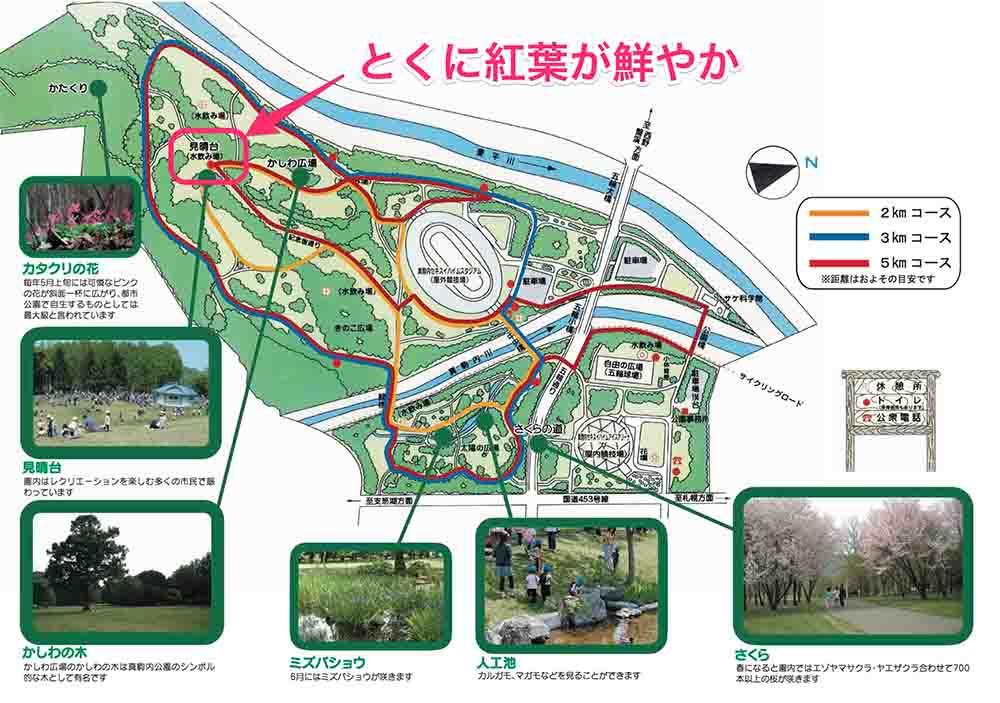 札幌真駒内公園の見取り図