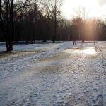換算50mmで初冬の真駒内公園を撮る(2016年11月下旬)