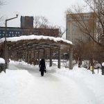 札幌の12月の寒さと雪事情/意外と過ごしやすい