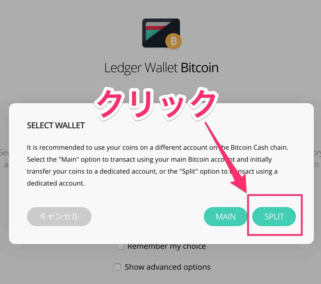 LedgerWalletBitcoin3