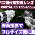 【オリンパス新作レンズ焦点距離1000mm!】M.ZUIKO DIGITAL ED 150-400mm F4.5【野鳥撮影でフルサイズに勝てるか?】