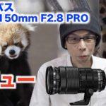 【動物園撮影レビュー】オリンパスM.ZUIKO DIGITAL ED40-150mm F2.8 PRO【望遠レンズ】