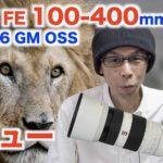 【動物園撮影レビュー】SONY FE 100-400mm F4.5-6.6 GM OSS【超望遠ズームレンズ】